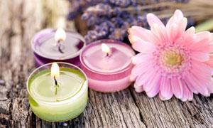 蜡烛薰衣草与粉色菊花摄影五百万彩票图片