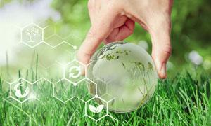 拾取草地上的球体情景创意高清图片