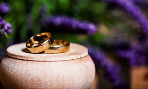 一对结婚用的金色戒指摄影高清图片
