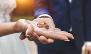 在新郎新娘手上的结婚戒指高清图片