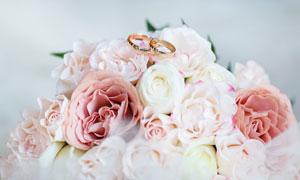 一堆鲜花上的婚庆戒指摄影高清图片