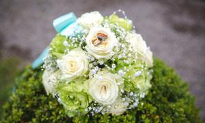 玫瑰花束上的戒指特写摄影高清图片