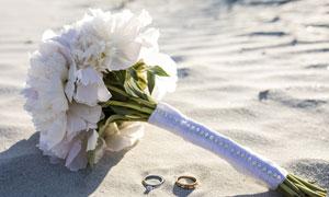 沙滩上的白色花束特写摄影高清图片