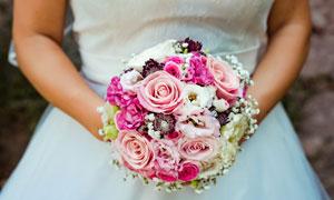 新娘手中鲜艳多彩的玫瑰花高清图片