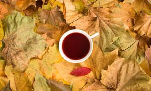 放在很多叶子上的杯子摄影高清图片