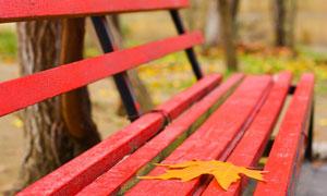红色长椅上的一片树叶摄影高清图片