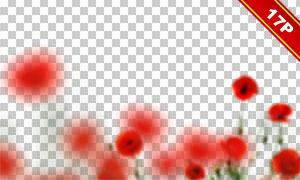 红色朦胧效果的罂粟花高光适用图片