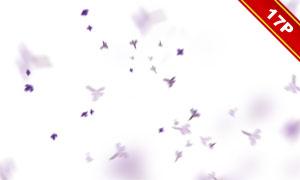 飛舞的丁香花等圖層疊加高清圖片V02