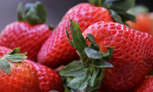 几个红彤彤的新鲜草莓摄影高清图片
