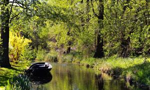 树林小河边的小船风景摄影高清图片