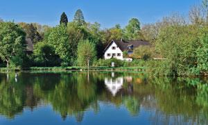 房子树木与平静的湖面摄影高清图片