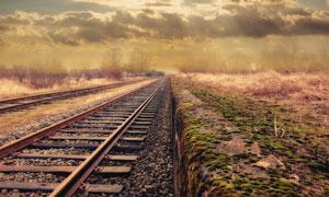 铁道与荒草丛自然风景摄影高清图片