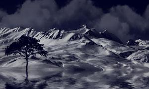 夜晚时分雪山大树黑白摄影高清图片