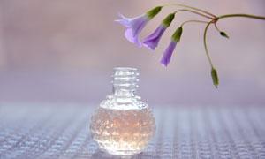 被香水熏着的紫色鲜花摄影高清图片