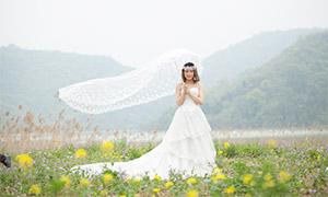 撑着蕾丝伞的婚纱美女摄影原片素材