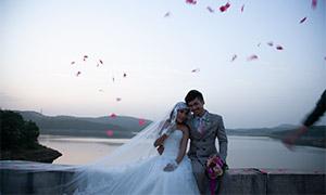 浪漫花瓣下的婚纱人物摄影原片素材