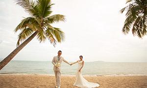 海边椰树下的人物婚纱摄影原片素材