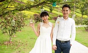 树木草地外景婚纱人物摄影原片素材