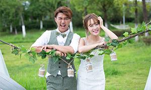 树木草坪风光外景婚纱摄影原片素材