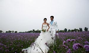白色婚纱礼服恋人外景摄影原片素材