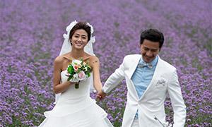 花海田园里的恋人婚纱摄影原片素材