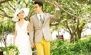 大树下的甜蜜爱人婚纱摄影原片素材