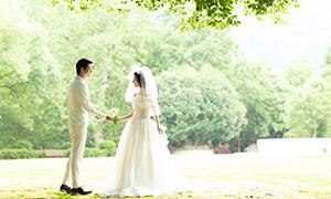 葱郁树木外景人物婚纱摄影原片素材