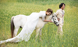 麦田里骑马的美女婚纱摄影高清原片