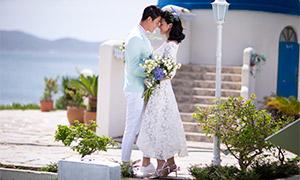 海边花盆植物外景婚纱摄?#26696;?#28165;原片