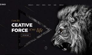 黑白简洁风格网站图文版式设计模板