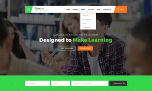 高等院校与培训课程等网站设计模板