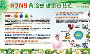 H7N9禽流感知识宣传栏设计PSD素材