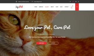 寵物周邊裝備店鋪主題網站設計模板