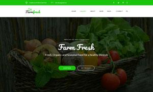 有機食品與生態農場等網站設計模板