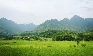 山间乡村美丽的田园风光摄影图片