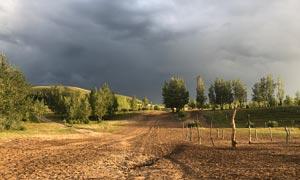 乌云密布下的田园风光摄影图片