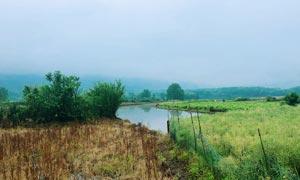 小清新主题田园风光摄影图片