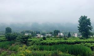 清晨美丽的乡村景观摄影图片
