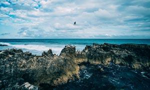 冷色风格海边美景摄影图片