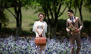 花叢中的甜蜜戀人婚紗攝影高清原片