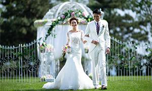 草坪上的白色婚紗禮服攝影原片素材