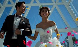 花瓣落下時的浪漫愛人婚紗攝影原片