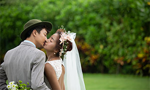 樹叢草地外景攝影婚紗主題高清原片