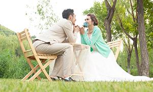 树木草地自然风景婚纱摄影原片素材
