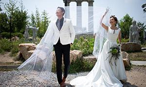 雕塑鲜花植物婚纱主题摄影原片素材