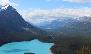 雪山下的湖泊和山林摄影图片