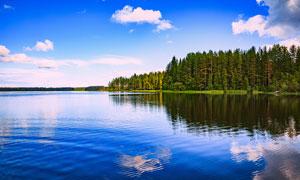 蓝天下的湖泊和树林摄影图片