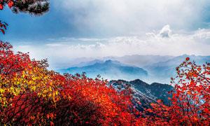 太行山美麗的山頂風光攝影圖片