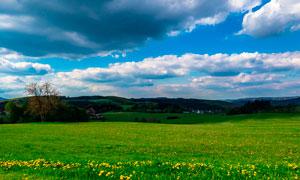 蓝天白云下的大草原美景摄影图片