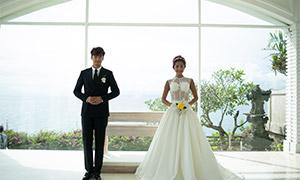 海景花草植物婚纱摄影高清原片素材